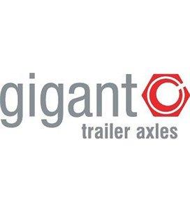 GIGANT PIDURITALLAD 2TK +KATTED GIGANT (1 RATAS) 999125380