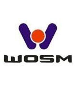 WOSIMAN KOJAMEESTE MOOTOR VOL FH12 999136270
