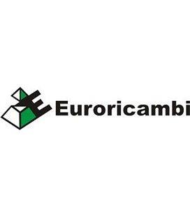 EURORICAMBI KÄIGUKASTI SÜNKRONISAATORI RÕNGAS ZF 16S150/151 95570224 999182670
