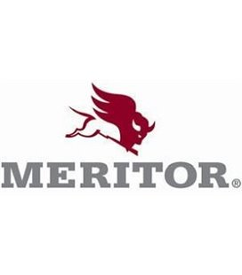 MERITOR KULUMISANDUR VOL FH4 PAREM 21296874 2200MM 999174260