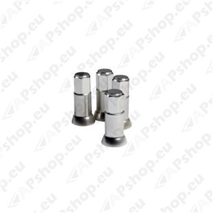 Ventiilikübarate komplekt S103-0250.6