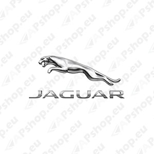 JAGUAR Key Cover C2P17158